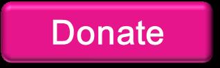 2013_donate96412